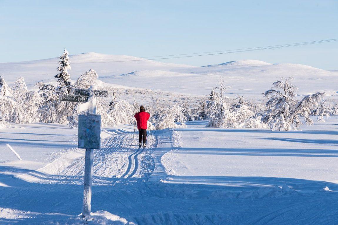 venabygdsfjellet-ski langrenn